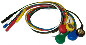 5 Qty 48″ Snap Leads